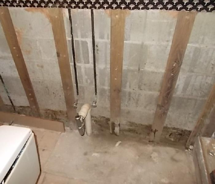 Mold Growth in Bathroom After
