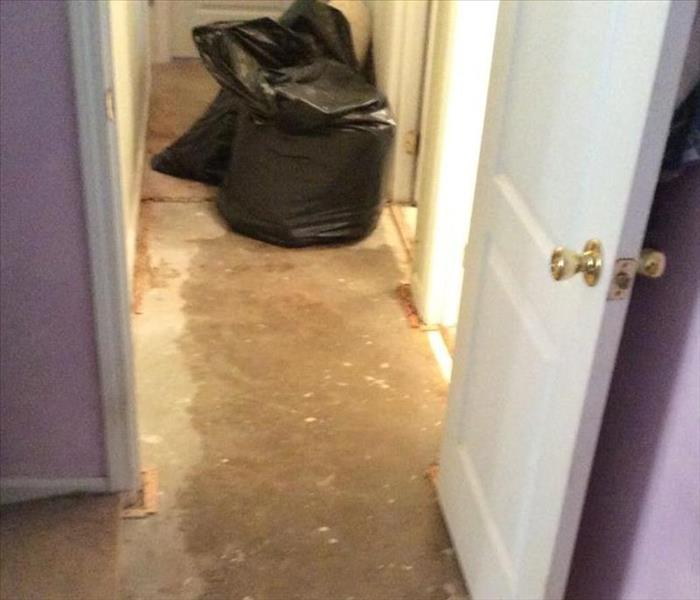 Water Damage to Home in Savannah After