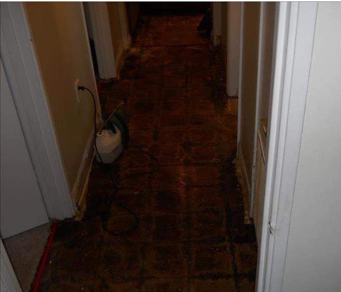 Water Damage from Savannah Storm