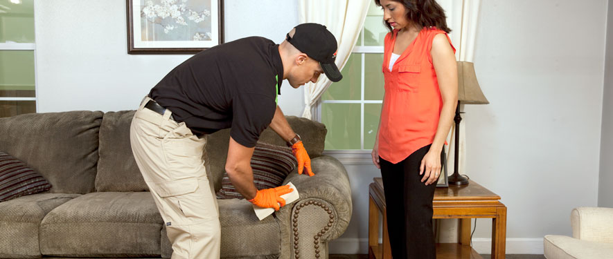 Savannah, GA carpet upholstery cleaning